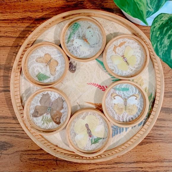 Vintage Preserved Butterfly Tray & Coaster Set